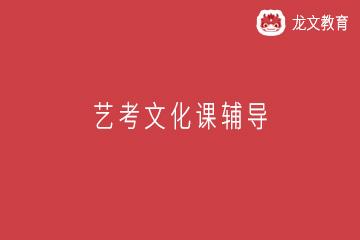 上海龙文教育上海艺考文化课辅导图片
