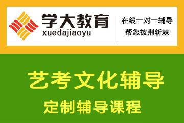 上海学大教育上海学大教育艺考文化辅导定制辅导凯发k8App图片