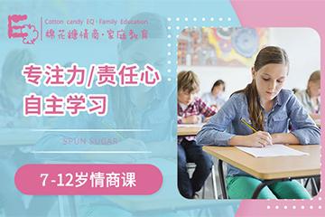 棉花糖情商·家庭教育棉花糖情商7-12歲訓練營圖片