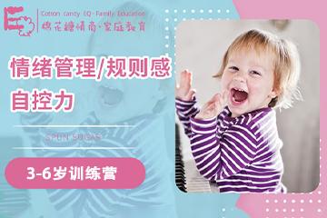 棉花糖情商·家庭教育棉花糖情商3-6歲訓練營圖片