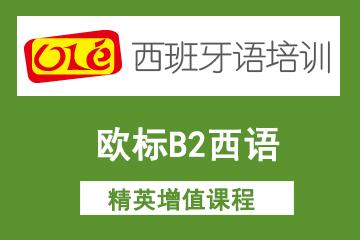上海OLE西班牙语培训学校上海ole欧标B2西语精英增值凯发k8App 图片