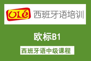 上海OLE西班牙语培训学校上海ole欧标B1西班牙语中级凯发k8App 图片