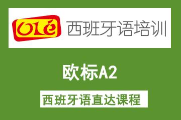 上海OLE西班牙语培训学校上海ole欧标A2西班牙语直达凯发k8App 图片