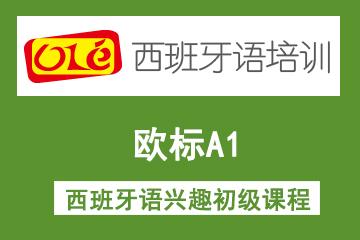 上海OLE西班牙语培训学校上海ole欧标A1西班牙语兴趣初级凯发k8App图片
