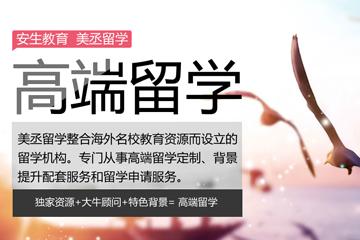 上海美丞留學美國TOP30高端申請項目圖片