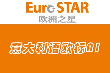 上海歐洲之星小語種上海歐洲之星意大利語歐標A1培訓課程圖片