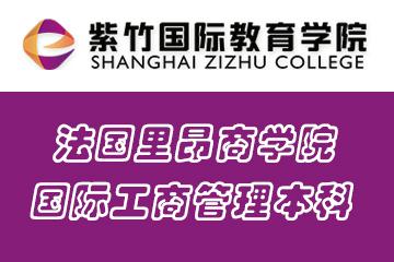 上海紫竹国际教育学院法国里昂商学院国际工商管理本科图片