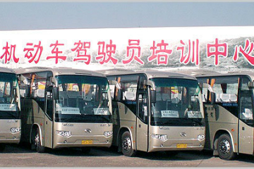 上海市机动车驾驶员培训中心B照申请图片图片