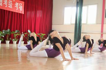 舞樂舞蹈培訓中心舞蹈考級培訓課圖片圖片