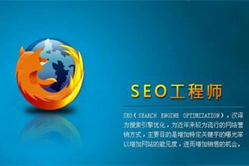 上海昂立IT职业教育SEO网站优化工程师图片