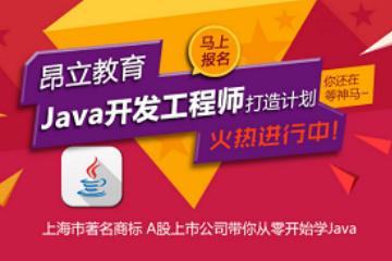 上海昂立IT职业教育JAVA 高级开发工程师图片