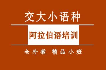 上海圖澍教育上海阿拉伯語培訓精品小班課程圖片圖片