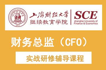 上海财经大学继续教育学院上海财经大学财务总监(CFO)实战研修凯发k8App图片