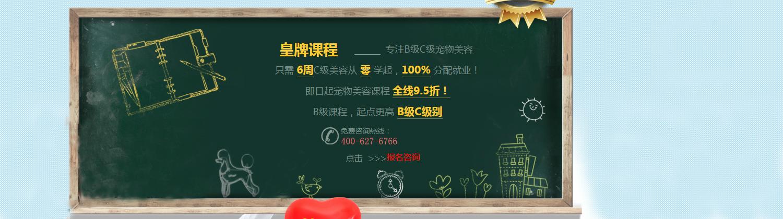 廣州愛狗創志寵物美容培訓學校