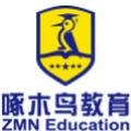 深圳啄木鳥教育