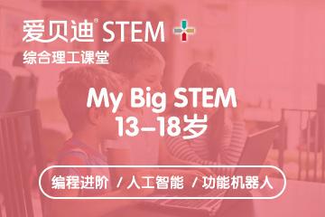 上海愛貝迪STEM+上海愛貝迪13-18歲中學生編程培訓課程圖片