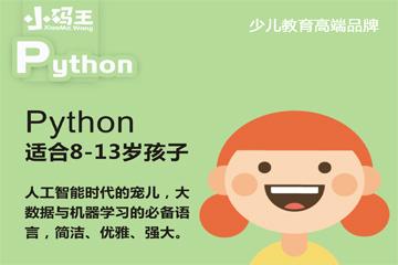 上海小碼王少兒編程上海小碼王Python少兒編程班圖片