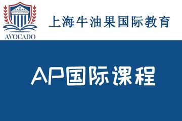 上海牛油果國際教育上海牛油果AP國際培訓課程圖片