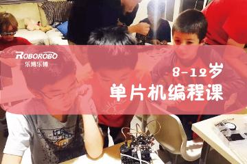 上海樂博樂博機器人上海樂博單片機機器人課程(8-12歲)圖片