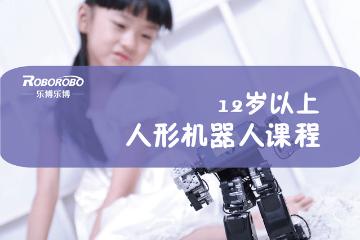 上海樂博樂博機器人上海樂博人型機器人編程課程(12歲以上)圖片