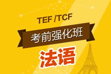 北京齊進法語TEF/TCF考前強化班圖片圖片