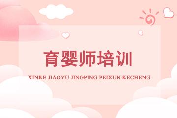 上海境学教育育婴师培训图片