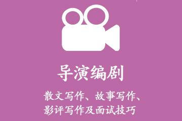 上海艺考星导演编导专业图片