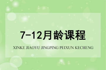 上海新愛嬰早教中心新愛嬰*7-12月齡課程圖片圖片