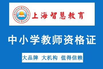 上海智慧教育中小學教師資格證考試培訓圖片