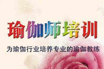 上海新健康學院《瑜伽師》(瑜伽教練培訓)招生簡章圖片