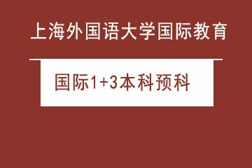 上海外國語大學留學預科中心國際1+3本科預科圖片