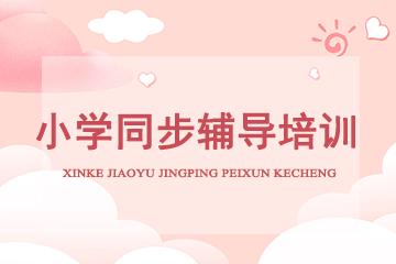 上海新貝青少兒教育小學同步輔導培訓課程圖片
