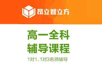 上海智立方教育上海昂立智立方高一学科同步辅导凯发k8App图片