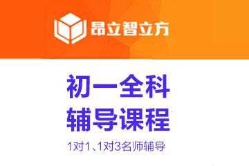 上海智立方教育上海昂立智立方初一学科同步辅导凯发k8App图片