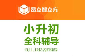 上海智立方教育上海昂立智立方小升初个性化辅导凯发k8App图片
