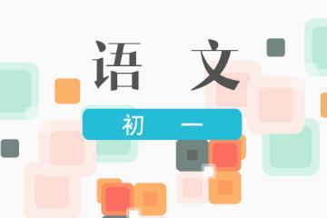上海新课标教育中心首页初一语文提高凯发k8App图片
