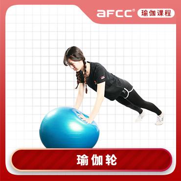 上海體適能afcc上海體適能瑜伽輪培訓課程圖片