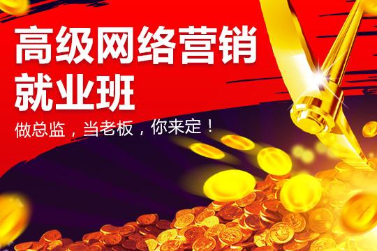 上海高级网络营销签约就业培训班