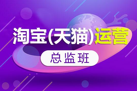 上海非凡教育淘宝(天猫)运营总监班图片