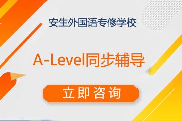 上海安生教育国际凯发k8App中心上海安生A-Level同步辅导凯发k8App图片