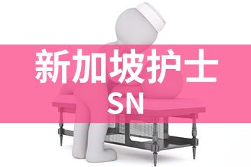上海宏景國際教育SN新加坡護士圖片