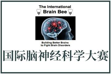 上海翰林學院Brain Bee國際腦神經科學大賽圖片