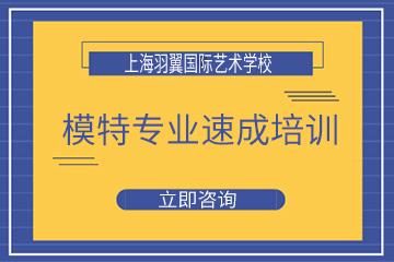 上海羽翼國際模特專業速成培訓課程(全日制)圖片