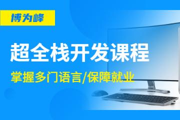 武漢51Testing博為峰教育武漢在線超全棧開發就業班圖片