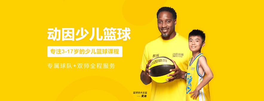 上海動因體育